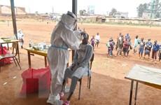 WHO: Biến thể mới có thể khiến làn sóng dịch bệnh ở châu Phi kéo dài