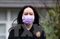 Canada từ chối nới lỏng các điều kiện tại ngoại đối với CFO của Huawei