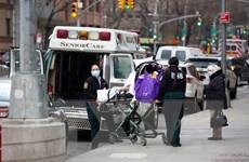 COVID-19 là nguyên nhân tử vong hàng đầu tại Mỹ trong tháng 1