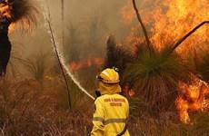 Australia tạm thời khống chế đám cháy rừng gần thành phố Perth