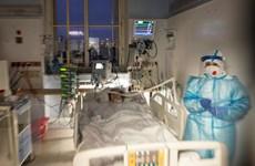 Séc ghi nhận ca nhiễm biến thể virus Nam Phi, chuẩn bị có thêm vắcxin