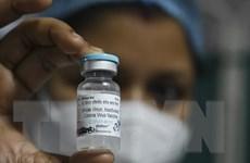 Vắcxin COVID-19 do Ấn Độ sản xuất có hiệu quả bảo vệ hơn 80%