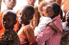 Việt Nam kêu gọi bảo vệ dân thường trước nạn đói do xung đột