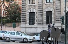 OECD: Triển vọng kinh tế của Italy có nhiều dấu hiệu khả quan