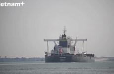 Giao thông trên Kênh đào Suez dần trở lại bình thường
