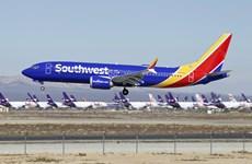 Boeing phát hiện thêm lỗi ở dòng máy bay tai tiếng 737 MAX