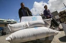 AL hoan nghênh Mỹ nối lại hoạt động viện trợ cho Palestine