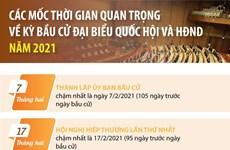 Các mốc thời gian quan trọng về kỳ bầu cử đại biểu QH, HĐND năm 2021