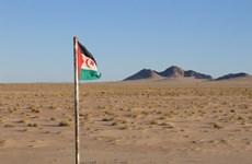 Việt Nam kêu gọi các bên xung đột ở Tây Sahara sớm quay lại đàm phán