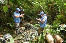 LHQ ghi nhận tiến triển đạt được về thỏa thuận hòa bình tại Colombia