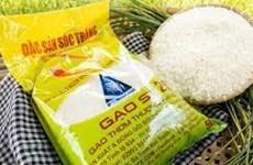 Gạo ST25 bị doanh nghiệp nước ngoài đăng ký thương hiệu tại Mỹ