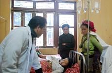 Yên Bái: Cứu sống bệnh nhân tự tử bằng lá ngón