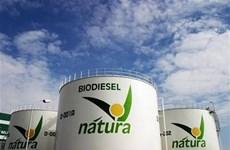 Argentina áp dụng mức trộn diesel sinh học cao nhất thế giới