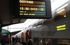 Bỉ: Giáng Sinh bị gián đoạn vì quả bom sót lại từ thế chiến 2
