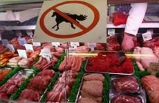 Hà Lan lệnh thu hồi 11 tấn thịt ngựa nhập khẩu từ Pháp