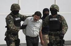 Mỹ yêu cầu dẫn độ trùm ma túy khét tiếng người Mexico