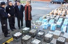Tây Ban Nha thu giữ 62 kiện hàng chứa 2 tấn ma túy