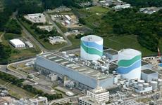 Nhật Bản thẩm định an toàn các nhà máy điện hạt nhân