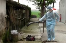 [Photo] Diễn tập thực địa phòng chống dịch cúm A ở người