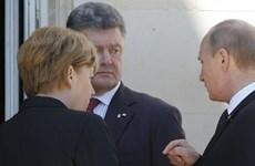 """Ông Poroshenko thấy """"cơ hội thành công"""" trong đối thoại với Nga"""
