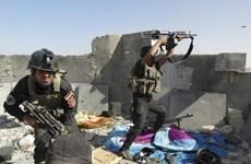 Iraq: Phiến quân ISIL phá hủy một cây cầu chiến lược