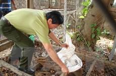 Vườn quốc gia Phong Nha-Kẻ Bàng thả 8 động vật quý về tự nhiên