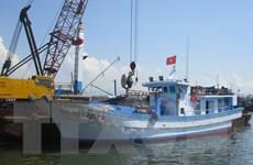 Nhiều ngư dân lựa chọn đóng tàu bằng chất liệu composite