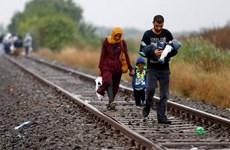 Các nước Đông Âu từ chối hạn ngạch tiếp nhận người di cư