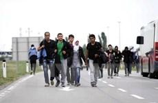 Khủng hoảng di cư: Hà Lan mở trung tâm tiếp nhận người tị nạn