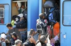 Đức kêu gọi Mỹ, Nga và Trung Đông giúp ngăn dòng người tị nạn