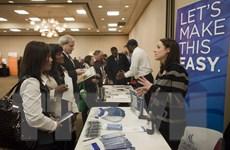 Những gam màu tương phản trong bức tranh thị trường việc làm Mỹ