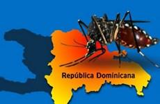 Cộng hòa Dominicana báo động trước dịch sốt xuất huyết