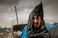 [Photo] Những hình ảnh ấn tượng trên thế giới trong tuần qua