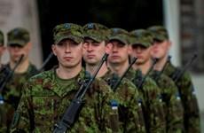 Estonia để ngỏ khả năng cử quân tham gia cuộc chiến chống IS