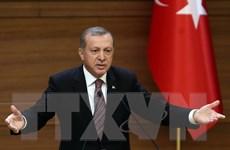 Bầu cử Thổ Nhĩ Kỳ: Cử tri ủng hộ thống nhất và toàn vẹn lãnh thổ