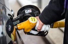 Giá dầu nối dài đà giảm do lo ngại về nguồn cung dư thừa