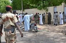 Cộng hòa Chad ban bố tình trạng khẩn cấp tại vùng Hồ Chad