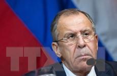 Lavrov: Nga sẵn sàng hợp tác tiêu diệt hang ổ khủng bố tại Syria