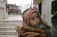 Pháp: Syria và Nga phải chấm dứt hành động nhằm vào dân thường
