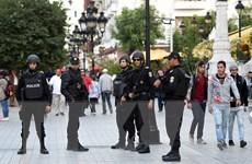 Hơn 5.500 người Tunisia gia nhập các tổ chức khủng bố nước ngoài