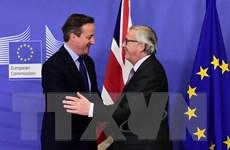 """Thủ tướng Anh lựa chọn tiếp tục """"ở lại"""" Liên minh châu Âu"""