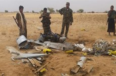 Lực lượng nổi dậy tại Yemen bắn rơi máy bay do thám của Saudi Arabia