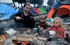 Cuộc khủng hoảng di cư đang đẩy Hy Lạp vào tình trạng kiệt quệ