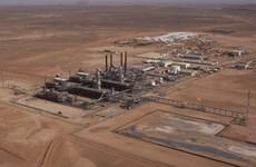 Phiến quân bắn rocket vào nhà máy khí đốt tại miền Nam Algeria