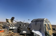 Nga gửi báo cáo chính thức cho Ai Cập về vụ tai nạn máy bay tại Sinai