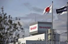 """Foxconn """"ghìm"""" giá mua Sharp xuống còn gần 3,5 tỷ USD"""