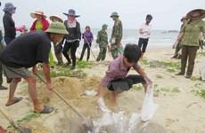 Ngân hàng Nhà nước chỉ đạo hỗ trợ ngư dân bị ảnh hưởng do cá chết