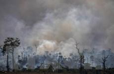Cùng với dịch COVID-19, biến đổi khí hậu vẫn là mối đe dọa toàn cầu