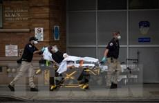 Số ca tử vong do COVID-19 tại Mỹ có thể lên tới hàng trăm nghìn người