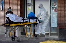 Dịch COVID-19: Số ca tử vong tại Tây Ban Nha, Bỉ tiếp tục tăng cao